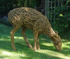 Muntjac Deer, life size, willow/steel.