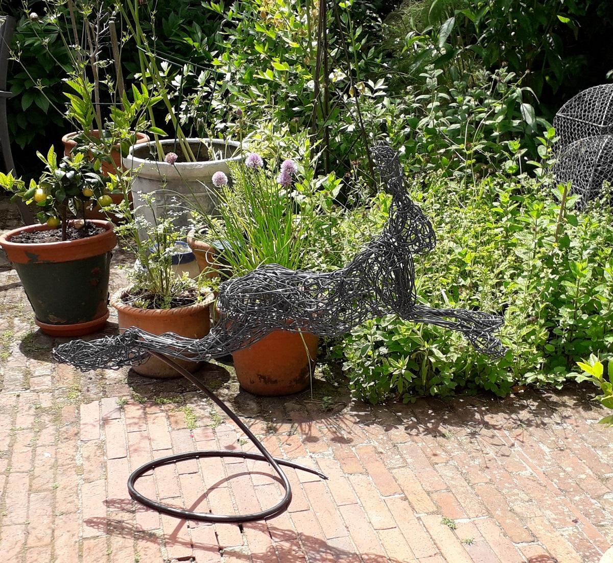Running Wire Hare on spiral.