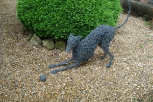 Whippet dog playing, life size, wire and steel.