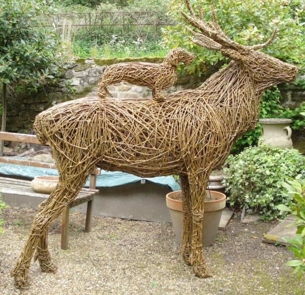 35.red deerr