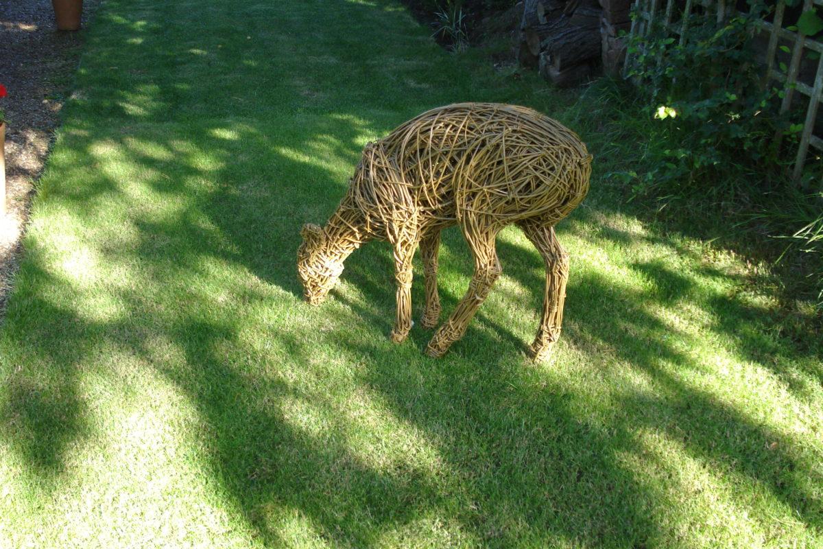 willow deer, muntjac deer sculpture, willow garden deer sculpture, willow deer, garden deer sculpture