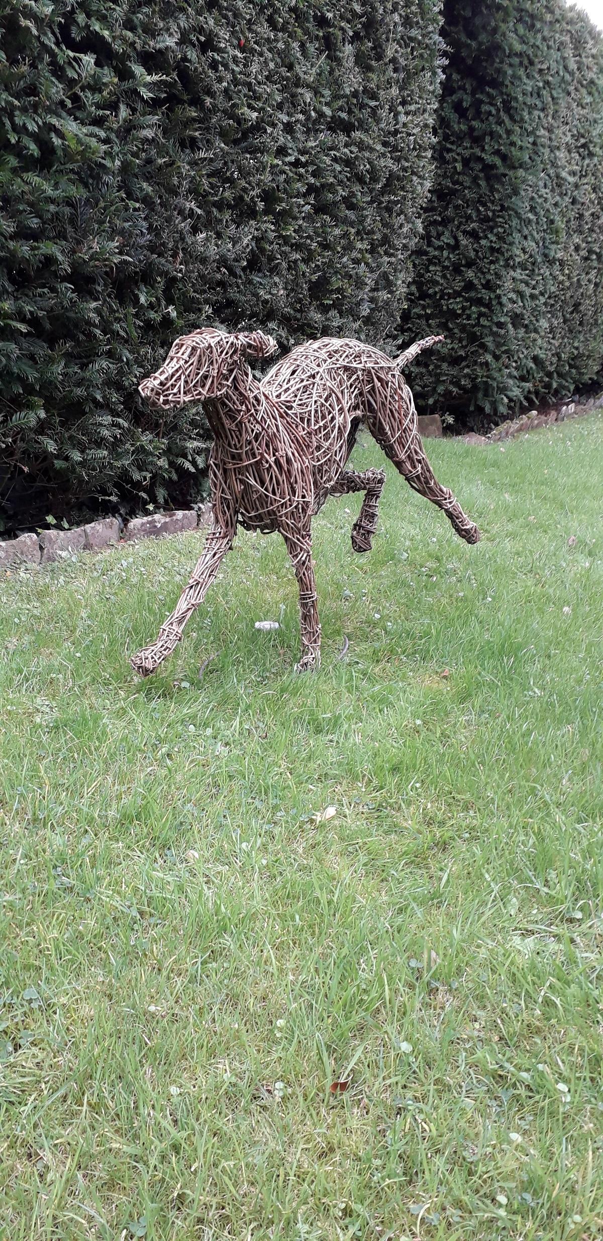 lurcher dog sculpture, willow and steel lurcher, garden dog sculpture